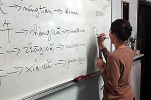 esperti linguistici