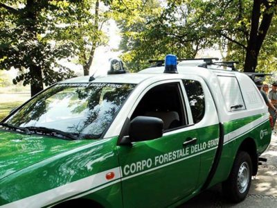 Come diventare Guardia Forestale
