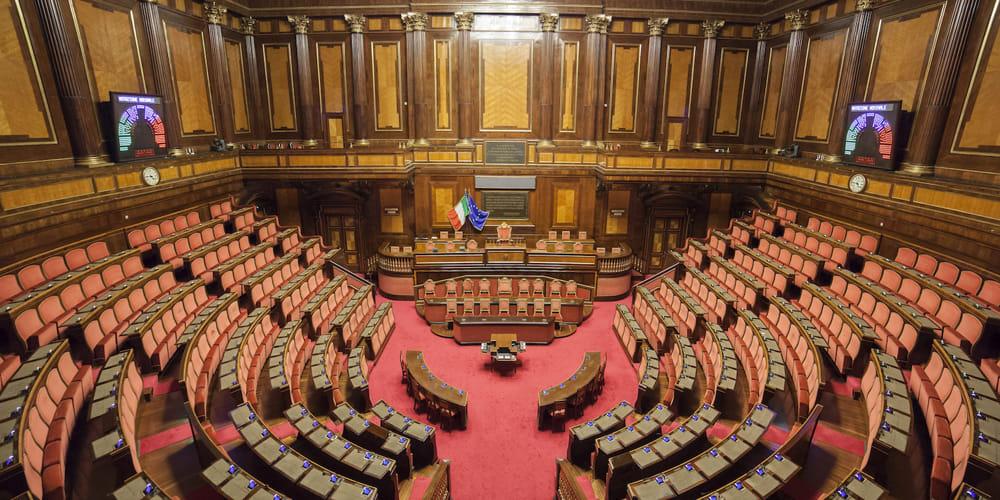 concorso senato