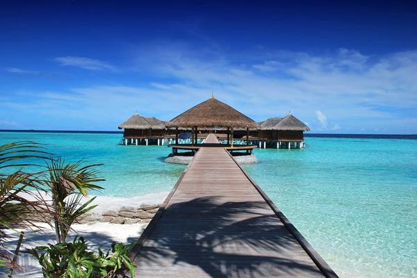 Cercasi libraio a piedi nudi alle Maldive